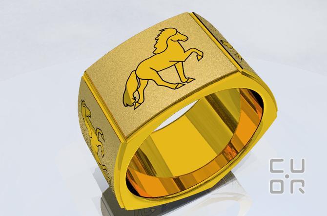 CAD Entwurf für einen Ring mit den fünf Gängen der Islanpferde